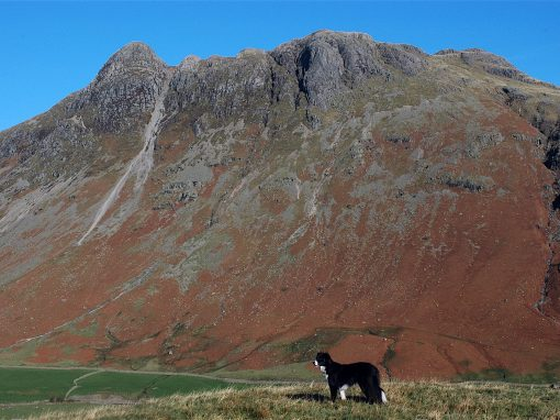 LANGDALE PIKES FROM SIDE PIKE