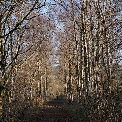 KESWICK - Bill Birketts Lakeland Walks