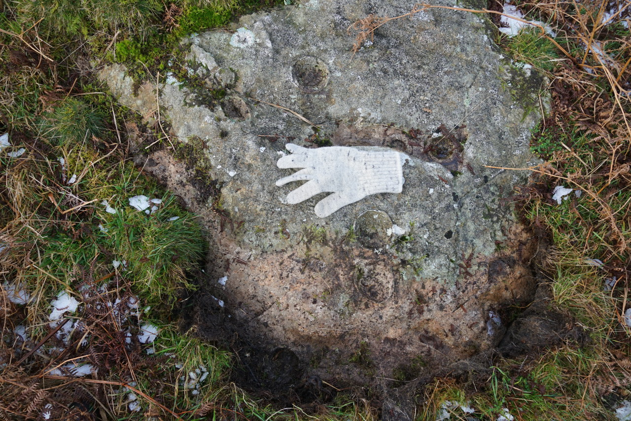 Similar nearby 'cup' markings which I believe to be wholly natural. This block of rock actually has eight of these 'cup' features (one still remains covered by turf on this image). Taken 28/12/20 at 2:24pm.