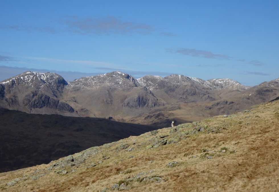 From the Grey Friar shoulder of Troutal Fell
