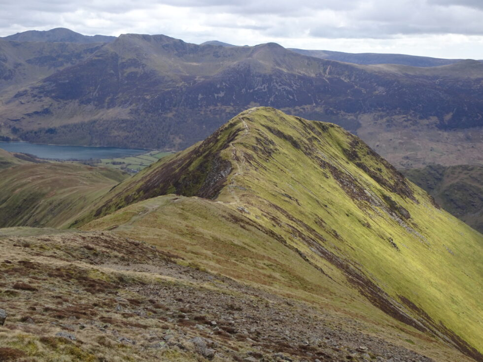 LOOKING TO WHITELESS PIKE